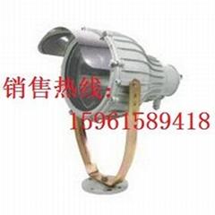 NFE009防爆投光燈250W/400W亞明1923光源電器