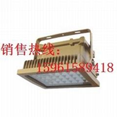 ST8031 LED免维护防爆灯