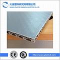 PE plastic honeycomb sheet /packaging