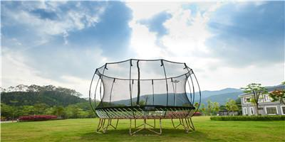 Trampoline with Enclosure  Net Basketball  1