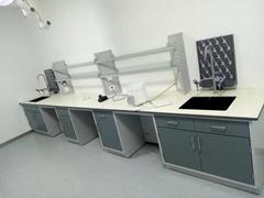 鹽城實驗室邊台通風櫃醫用研究院操作台廠家定製水槽台