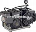 L&W空气压缩机LW100 E活性炭滤芯000644 3