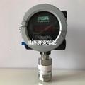 MSA梅思安DF-8500可燃气体检测报警器10147781 3