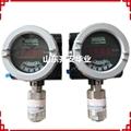 MSA梅思安DF-8500可燃气体检测报警器10147781 4