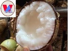 Wax Coconut