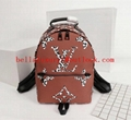 2019 Top quality Louis vuitton shoulder bag, LV backpack, men's and women's bags 13
