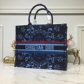 New Dior Handbags Wholesale,Dior Purses,Dior Bags,Dior Wallet.Dior Backbag 11