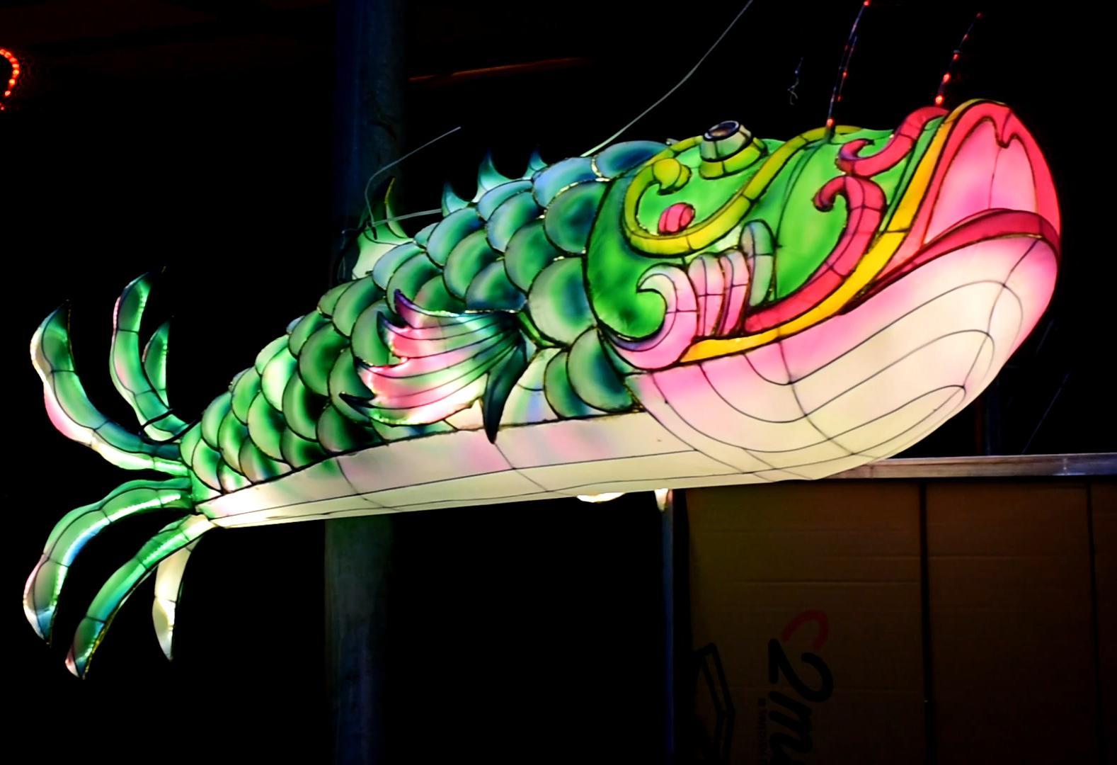 Chinese festival fish lantern with LED light  2