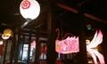 Chinese festival fish lantern with LED light  4