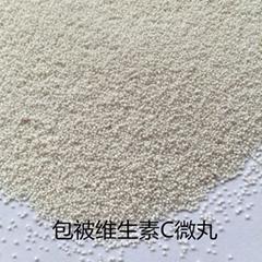 供应维生素C包被微丸代加工
