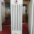 qfgz709鋼制系列七柱暖氣