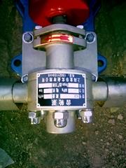 红旗高温泵厂华潮牌食用油泵齿轮泵