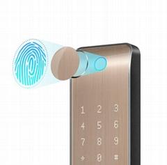 Fingerprint Entrance Lock