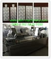 DPP-250 Automatic Blister Packing