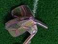 Original quality Miura MC-501 golf forged irons 10