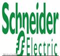 施耐德/SchneiderEV12s31-25(275)DHVX系列真空断路器 4