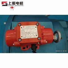 MVE-1-2 MVE Vibrator Motor