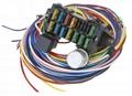 12 circuit Universal Wiring Harness kit 1