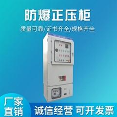 化工廠石油專用PXK系列正壓型防爆配電櫃