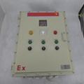 防爆配電箱生產銷售生產量大 4