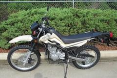 Brand New XT250 Sport Di