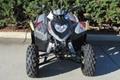 Factory Cheap Price Phoenix 200 ATV