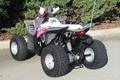 Wholesale New Outlaw 110 Mini ATV 5