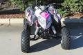 Wholesale New Outlaw 110 Mini ATV 8