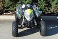 Wholesale New Outlaw 110 Mini ATV 15