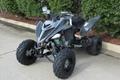 Factory Cheap Price Raptor 700 ATV 2