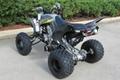 Factory Cheap Price Raptor 700 ATV 8