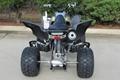 Factory Cheap Price Raptor 700 ATV 7
