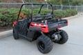 Factory Directly Sell Ranger 150 EFI UTV