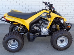 Cheap Discount DS 250 ATV