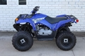 Factory Cheap Price Grizzly 90 ATV