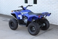 Factory Cheap Price Grizzly 90 ATV 6