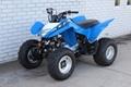 Factory Supplier Best Selling TRX250X ATV 6