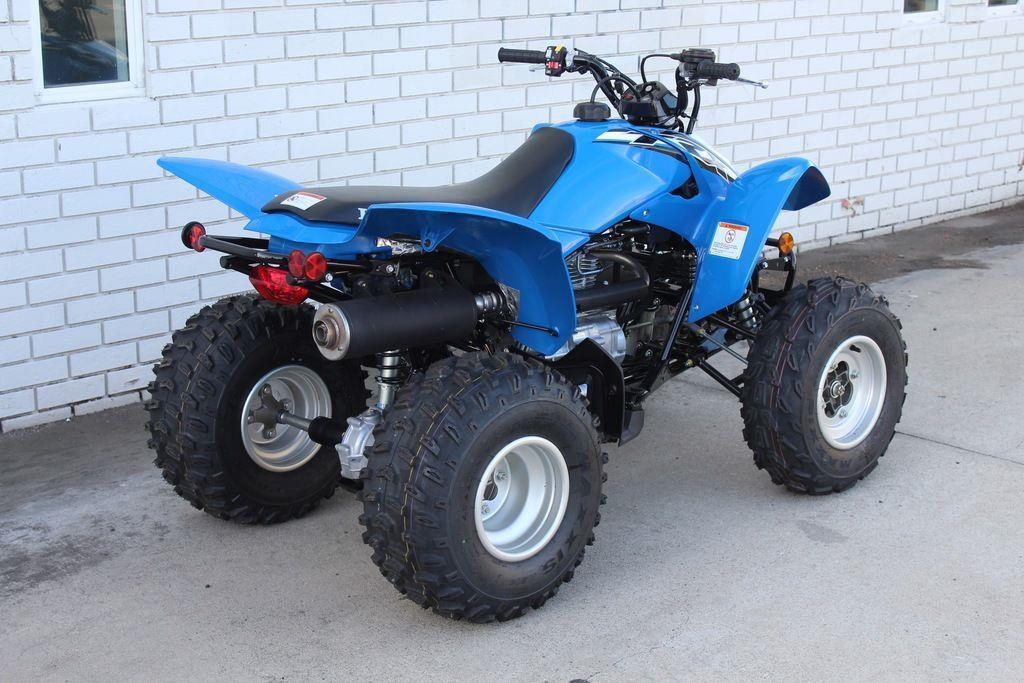 Factory Supplier Best Selling TRX250X ATV 3