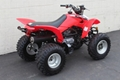Factory Supplier Best Selling TRX250X ATV 11