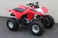 Factory Supplier Best Selling TRX250X ATV 12