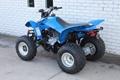 Factory Supplier Best Selling TRX250X ATV 5