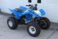 Factory Supplier Best Selling TRX250X ATV 2