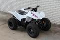 Wholesale New Original TRX90X ATV 11