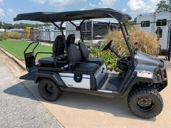 WHOLESALE NEW UMAX RALLY II GOLF CART