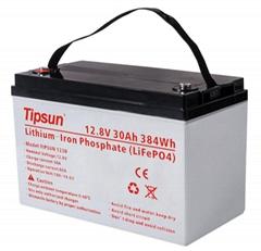 Tipsun可充电式锂铁电池12V 20Ah  30Ah