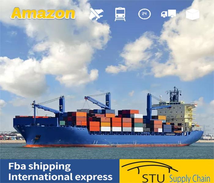 盐田港到玻利维亚港整柜散货到港海运双清服务 5