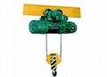 污水處理廠用電動葫蘆 1
