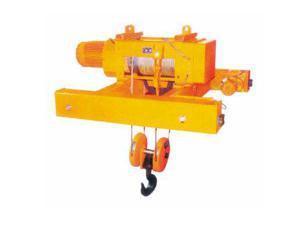 污水處理廠用電動葫蘆 2