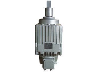 Ed/YT推動器 起重機電力液壓推動器 2
