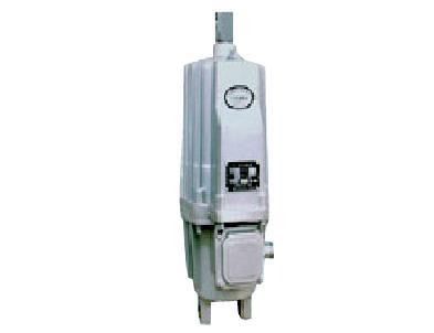 Ed/YT推動器 起重機電力液壓推動器 4
